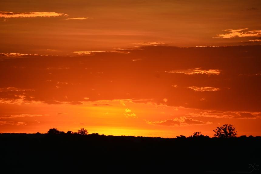 ZAMBEZI_river_cruise_zambia_zimbabwe_sunset_africa_orange_yellow_sunset_victoria_falls
